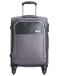 Safari Pro Business Fabric 56 Cms Brown Softsided Carry-On (PRO BUSINESS 57 4 Wheel Trolley Case)