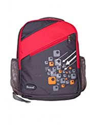Scout Specious College Polyester 20 Ltrs Red & Black Backpack
