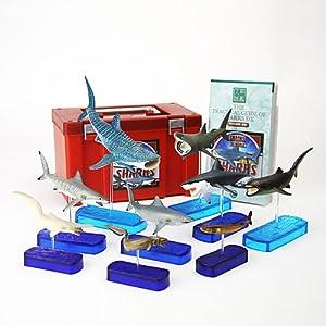 【クリックでお店のこの商品のページへ】Amazon.co.jp | 立体図鑑リアルフィギュアボックス シャークデラックス(サメの仲間) | おもちゃ 通販